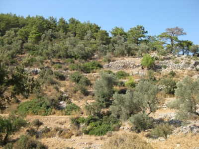 A View of the Remaining Walls of the Pedasa Ruins